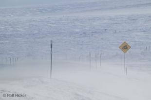 photo of Road Signs Steep Hill Winter Storm