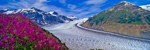 photo of Salmon Glacier Misty Fjords Panoramic