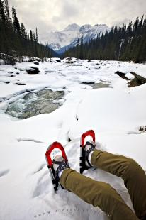 photo of Shoeshoes Mistaya River Snow Scenery