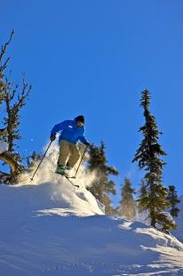 photo of Skiing Action Whistler BC