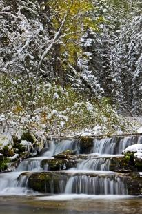 photo of Snow Covered Waterfall Scenery Waterton Lakes National Park