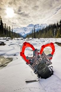 photo of Snowshoes Mistaya River Winter Recreation