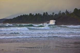 photo of Winter Storm Wave Action Pacific Ocean Coast