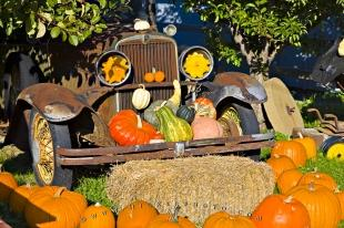 photo of Sweet Vintage Old Timer Car Pumpkin Display