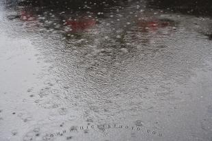 photo of Wet Pavement Rain