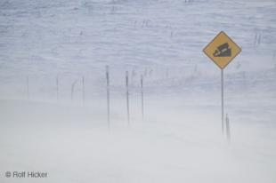 photo of Winter Road Sign