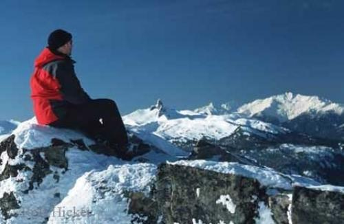 Whistler Mountain Tourist Enjoying View