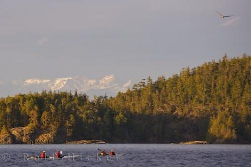 Adventure Kayaking Northern Vancouver Island