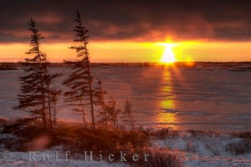 Arctic Tundra Sunset Photo Churchill Canada