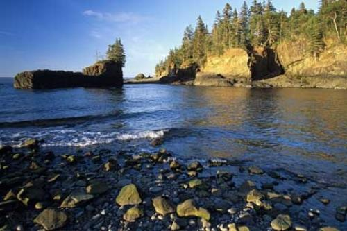 The Bay of Fundy is famous for