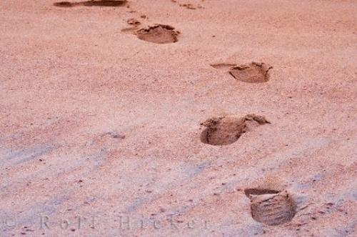 Photo:  Red Sand Beach Footprint Picture