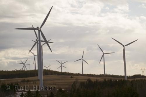 Photo:  Cap Chat Windmills