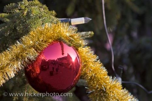 Photo:  Christmas Tree Ornament Picture