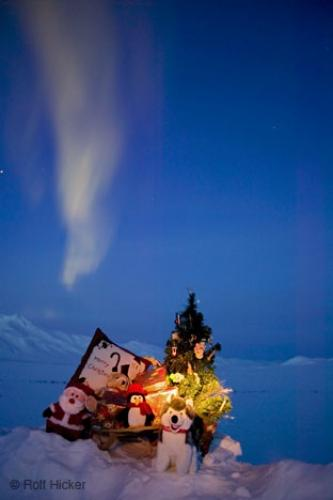 photo of a christmas display with a christmas tree and northern lights dancing above alaska usa