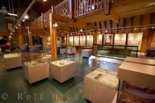 Photo:  Exhibits Newfoundland Insectarium And Butterfly Pavilion