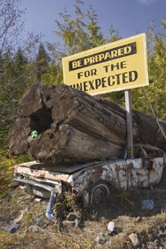 Photo of a Funny Sign with a old car under a big tree,