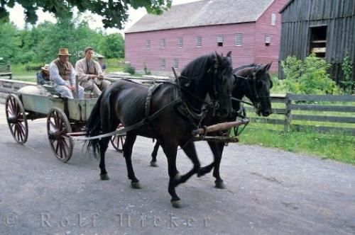 Horse Drawn Vehicles - Horse Drawn Wagons, Sleighs, Carriages ...