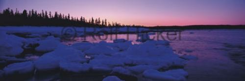 Panorama Pack Ice Sunset Newfoundland Winter Pictures