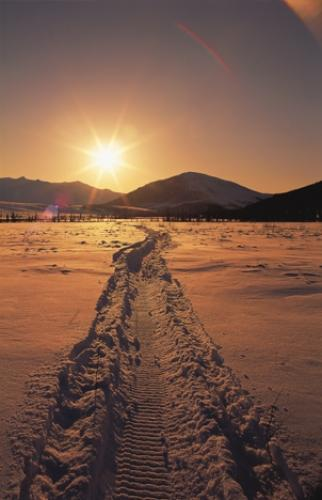 Winter Scenery Snowmobile Track Sunset Pictures