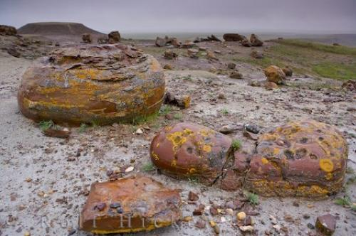 Photo:  Red Rock Coulee Alberta