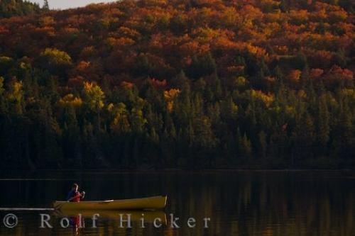 Rock Lake Canoeing At Sunset Algonquin Provincial Park