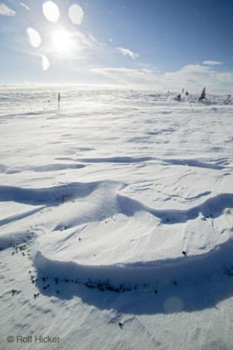 Photo:  Snow Formation