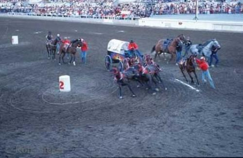 Photo:  Stampede Rodeo Calgary