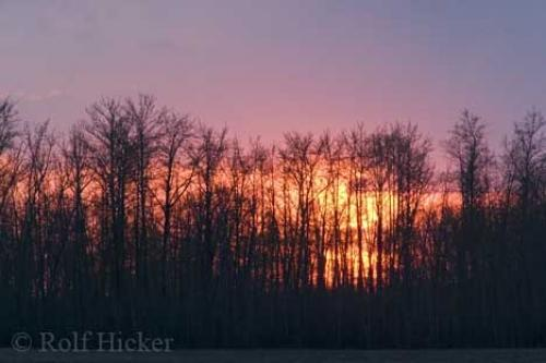 Photo:  sunset picture