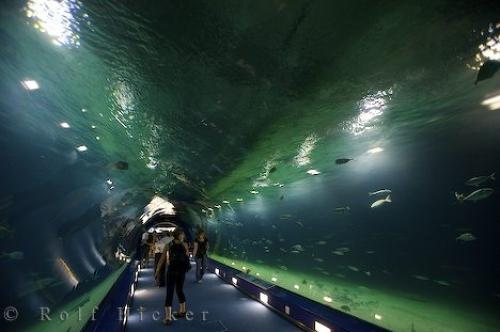 Photo:  Tunnel Of Fish Spain