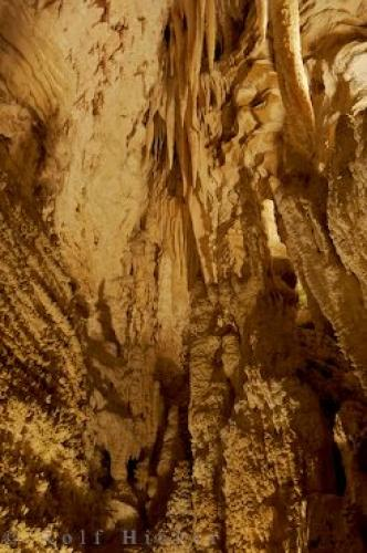 Photo:  Waitomo Caves Picture