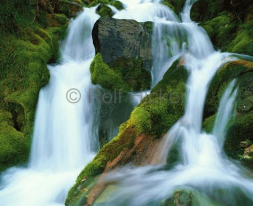 Photo:  Green Moss Waterfall Picture