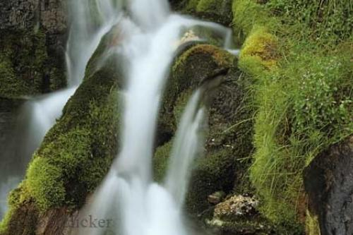 Photo:  Waterfall Picture Banff National Park
