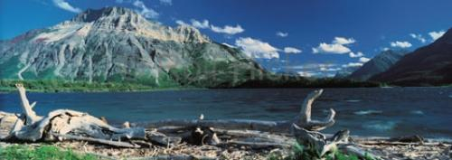 Photo:  waterton lakes national park picture