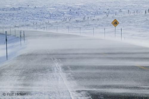 pics of winter storms. Picture of Winter Storms. Stock Photo License · Create a lightbox