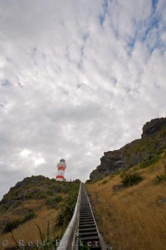 Wooden Stairs Cape Palliser Lighthouse Cliff | Photo