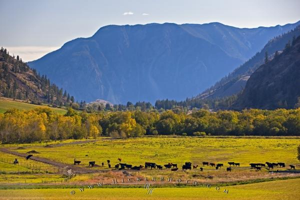 Photo:  Canadian Landscapes Mountains Valleys