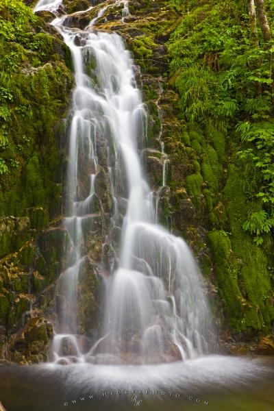 Rainforest Waterfall Picture Northern Vancouver Island Canada