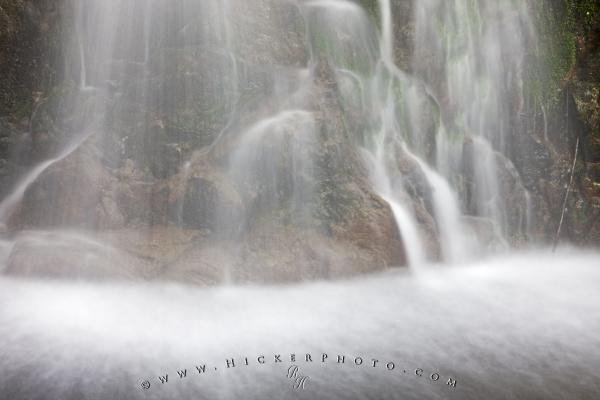 Photo:  Water Details Temperate Coastal Rainforest Waterfall Picture