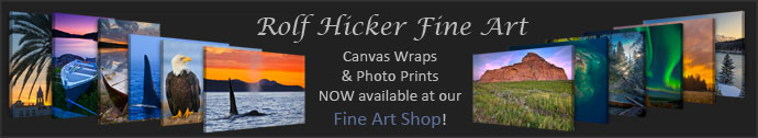 Rolf Hicker Fine Art Shop