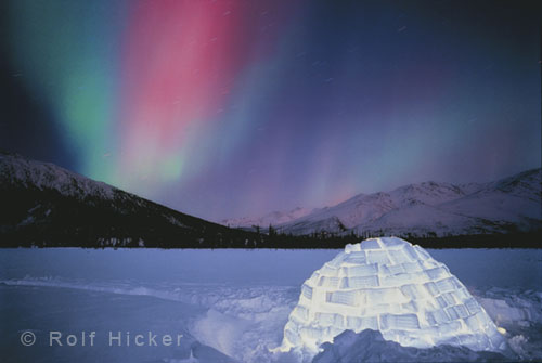 aurora borealis or northern lights pictures