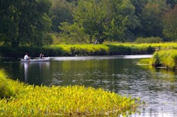 Picture of people out canoeing on the Mersey River in the Kejimkujik National Park in Nova Scotia Canada