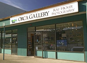 orca gallery fine art photography